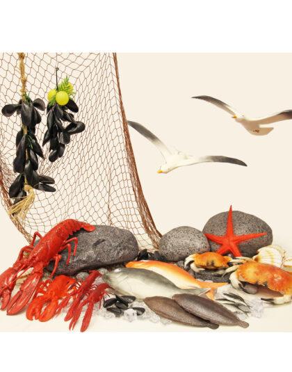 Fisk & Skaldjurspaket