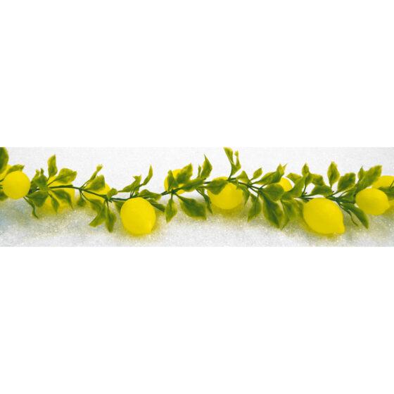 Citrongirlang