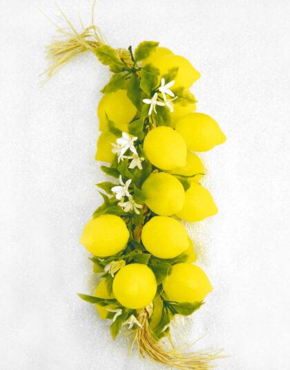 Ranka med 20st Citroner