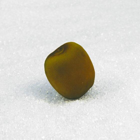 7cm Kiwi