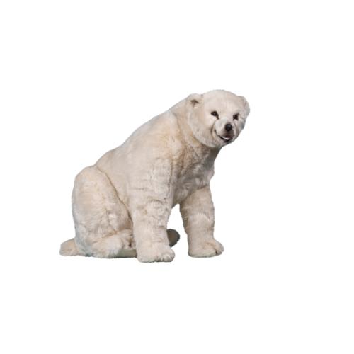 0328 Isbjörn sittande