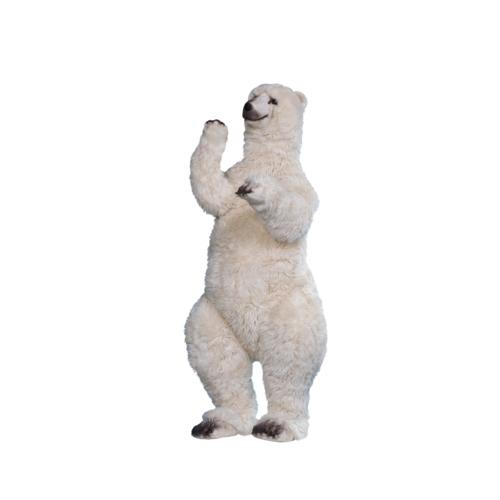 0336 Isbjörn stående på två ben