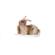0778 Kanin brun liggande