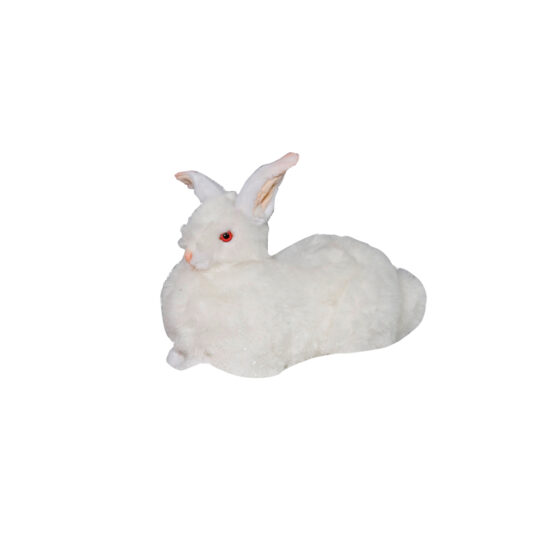 0780 Kanin vit liggande