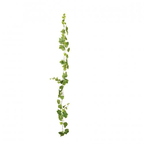 vinbladsgirlang
